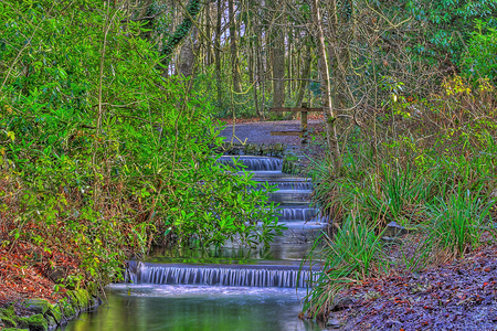 Water stairs - forest, image, background, stairs, beautiful, trees, water, green, waterfall, nature, hdr, river, landscape, blue