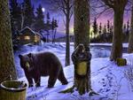 Canadas winter