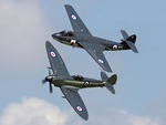 Seahawk and Seafire