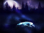 Sleeping In Moonlight