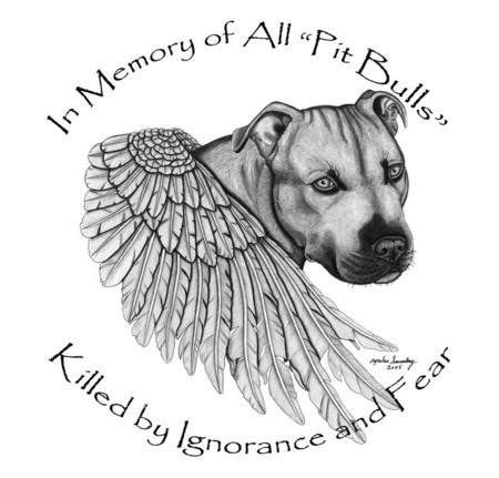 In loving Memory  - hate the deed not the breed, love, heaven, pit bull