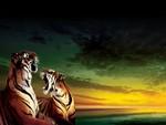 Tigers Roar