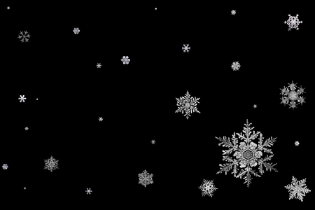 Snowflakes (snaigės) - snowflake, snowflakes, winter, black and white