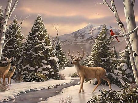 Beautiful Deer In Snow Wallpaper