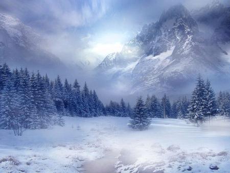 Winter Scene Winter Nature Background Wallpapers On Desktop