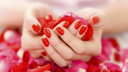 With Love for Luiza (Dreamer-girl) - beauty, lovely, nail, love, polish, flowers, hands, pretty, fingers, red, beautiful, friendship, photo, roses, dreamy, nature, pink, rose, rose petals, fantasy, flower, scene, photography
