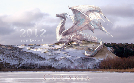 White dragon on the Curonian dunes - dunes, curonia, white, curonian, 2012, dragon, new, years