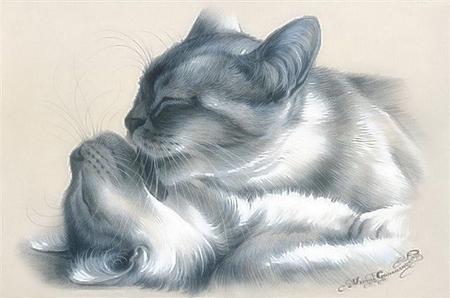 By Irina Garmashova Cats Animals Background Wallpapers On