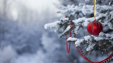 Christmas - ornement, christmas, photography, pine, tree, nature, red, ball, forest, beautiful, snow, winter, snowflakes