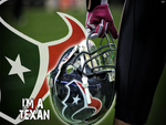 Houston Texans 2