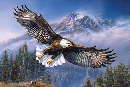By James Meger * Bald eagle - painting, tree, free, bird, eagle, animal, james meger, art, mountain, fly
