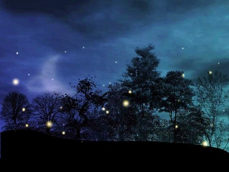 Magical Night - trees, abstract, fireflies, lights, purple, dark, summer, evening, blue, night