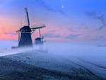 Holland mists