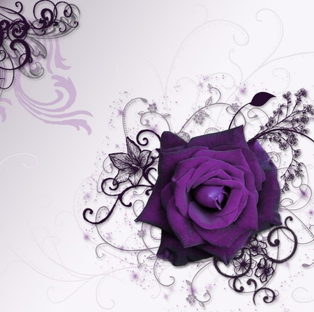 ☼Purple Dream Time Rose☼    4 Beth2shy - fantasy, rose, other, abstract, nature, flower