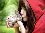 The Red Riding Hood and the rabbit
