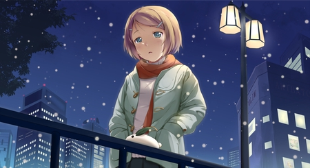 Huh?!?! - blonde hair, building, lamp post, tree, anime, snow bunny, lights, alone, night, female, sky, street lamp, night sky, street, sadness, bunny, stars, snow, snowing, girl, scarf, leaves