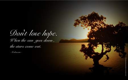 Never Lose Hope...