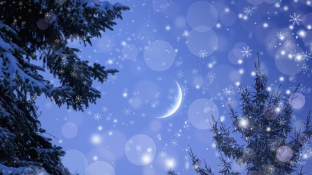 snowy winter night sky amp nature background wallpapers on