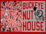 THE BUCKEYE NUT HOUSE