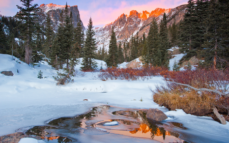 Winter in the mountains - mountains, pinetrees, frozen trees, reflected, lake, winter