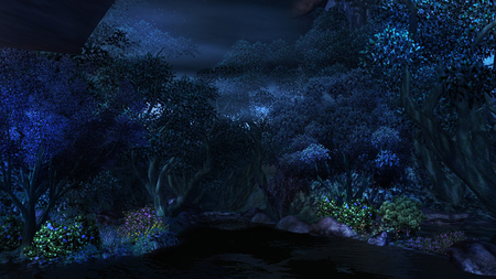 Night Garden Flowers Nature Background Wallpapers On