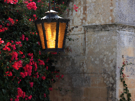 Old Lamplight - red, lamp, golden, wall, vine, bougainvilla, stone, flower, flowers, colour, light