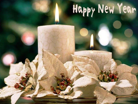 happy new year to all my friendsfans and visitors