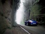 Blue Porsche Carrera