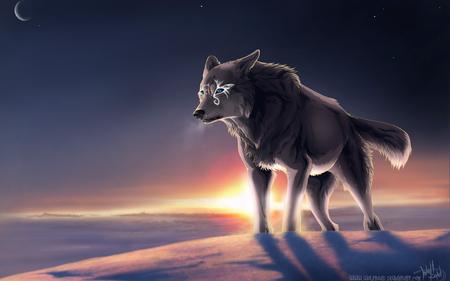 alpha wolf other anime background wallpapers on desktop nexus