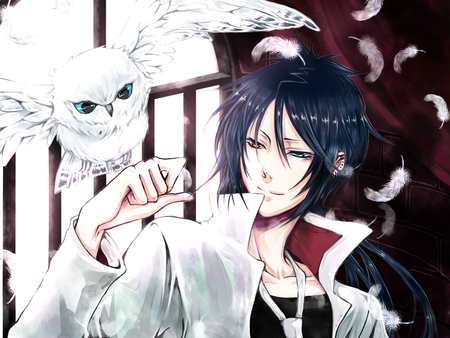 Mukuro Rokudo - owl, red eye, shounen, katekyo hitman reborn, fantasy, cool, blue eye, mafia, anime, mukuro rokudo, feathers