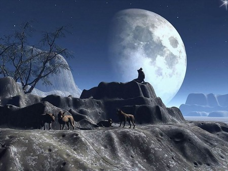 Nice moon - digitalart, lovely