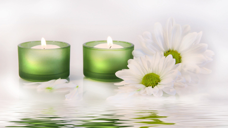 Candles and Daisies - beautiful, reflection, candles, daisies, white, green