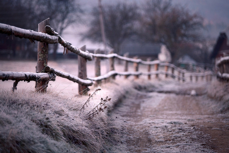 natures beauty - artistic, nature, photography, winter