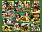 Rascals - Dogs F2