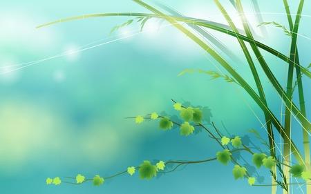 Bamboo Spring Vector