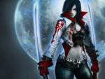 Dark Swords Warrior