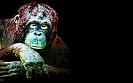 Handsome As Me - monkey, fractalius, caring, primates, ape, beauty, loving, animals