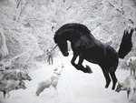 wolves-vs-unicorn