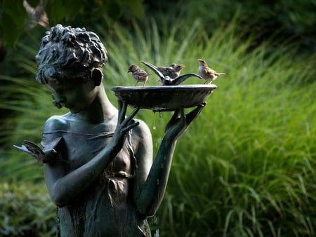 Bathing birds - grass, bath, beautiful, drops, photography, statue, green, teardrops, bathing, hand, face, feathers, bowl, animals, lovely, birdbath, greenery, birds, park, fingers, water, girl, droplets, nature