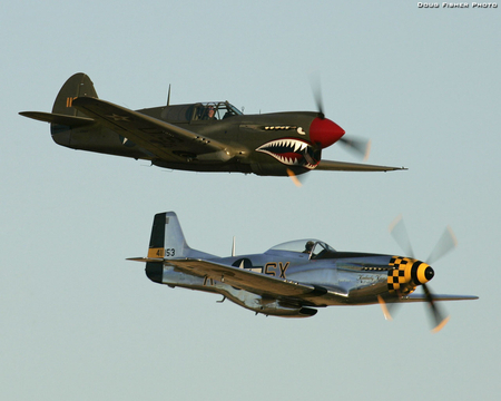 P40 Warhawk and P51 Mustang - world, kimberly, fighter, kaye, p-40, tiger, american, mustang, wwii, p51, p-51, p40, classic, north, war, warhawk, ww2, antique, airplane, plane, kittyhawk, flying, curtiss