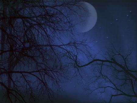 moon at night - halloween, sky, fog, scary, moon, night, trees