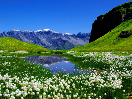 Beautiful lake in spring - grass, beautiful, spring, sky, clouds, lake, mountain, snow, flowers, blue
