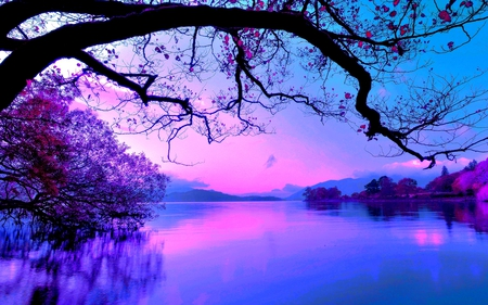 Pictures of Nature Beauty Beautiful Night Nature
