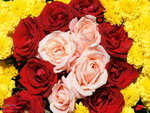 Red and Pink Roses with Yellow Chrysanthemums.