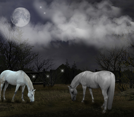 Secret_Rendezvous - moon, grass, houses, white, horse, sky, horses, night