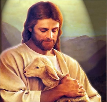 Our sweet Lord, Jesus - christ, sheep, jesus, religion, christianism, shepherd, god