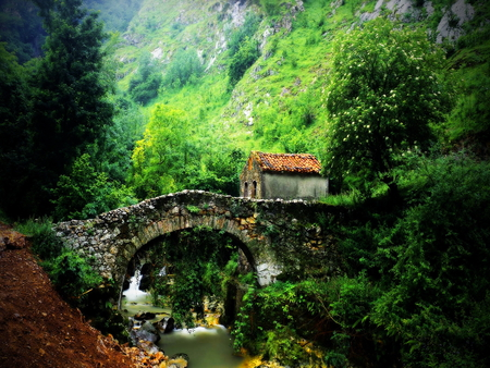 Old stone bridge - bridge, water, old, trees, nature, creek, forest, stone, river, house, green, mountain
