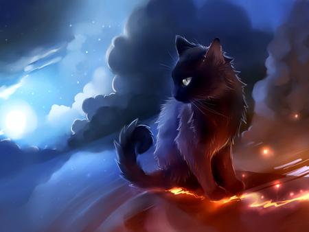 Moon Cat Other Abstract Background Wallpapers On Desktop Nexus Image 945370