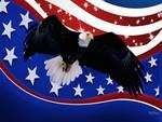 Freedom Flys II