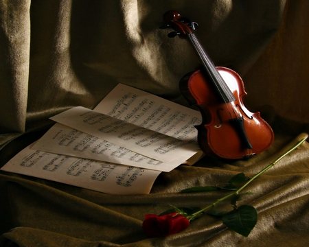 A Violin And A Rose Music Entertainment Background Wallpapers On